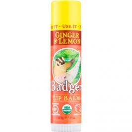 Badger Classic Ginger & Lemon ajakbalzsam  4,2 g
