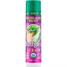 Badger Classic Highland Mint ajakbalzsam  4,2 g