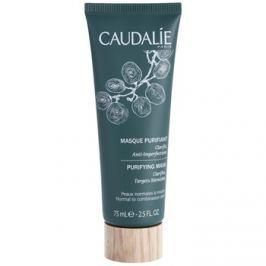 Caudalie Masks&Scrubs tisztító maszk a bőr tökéletlenségei ellen  75 ml