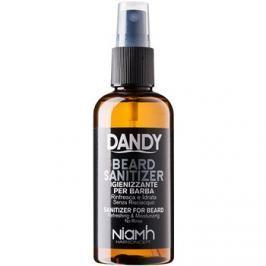 DANDY Beard Sanitizer leöblítést nem igénylő fertőtlenítő spray a haj védelmére  100 ml