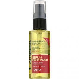 Delia Cosmetics Cameleo BB regeneráló szérum festett vagy melírozott hajra  55 ml