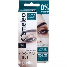 Delia Cosmetics Cameleo Pro Green szemöldökfesték ammónia nélkül árnyalat 1.0 Black 15 ml