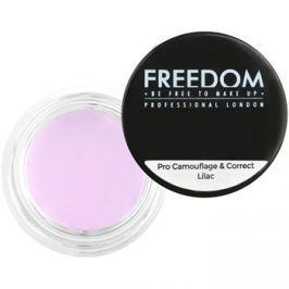 Freedom Pro Camouflage & Correct korrektor a szem alatti sötét karikákra árnyalat Lilac 2,5 g