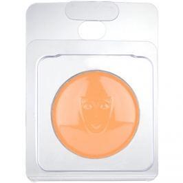 Kryolan Dermacolor Light arcpirosító utántöltő árnyalat DB 1 2,5 g