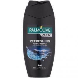 Palmolive Men Refreshing fürdőgél férfiaknak 3 az 1-ben  250 ml