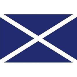 Talamex Flag Scotland 20x30 cm